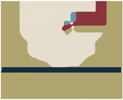 Aymeric Maini Logo